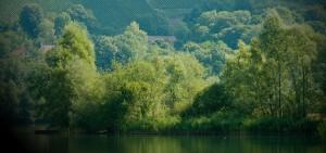 Ответственный подход к водным ресурсам, очистке стоков и утилизации побочных продуктов и отходов