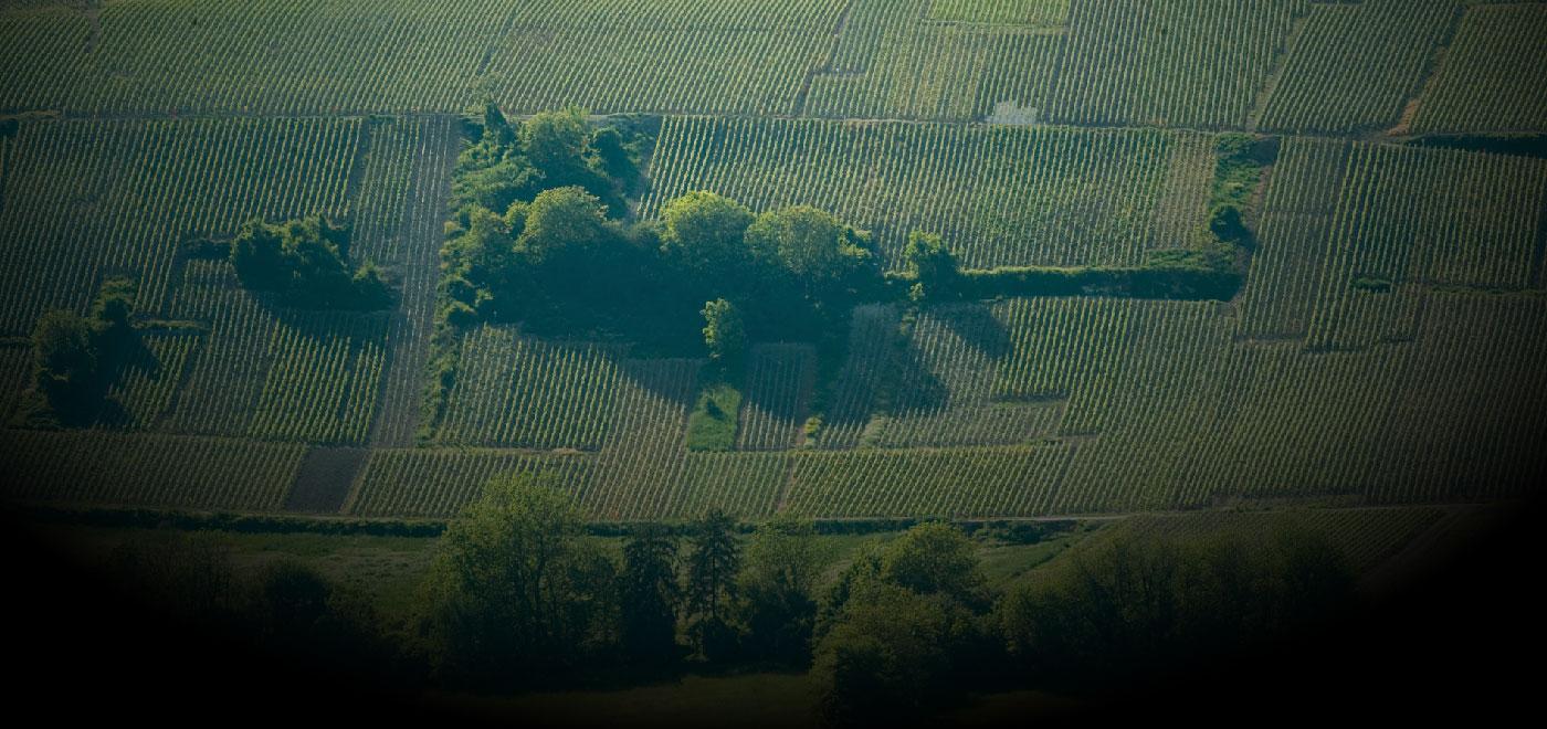 320 КРЮ (винодельческих деревень)